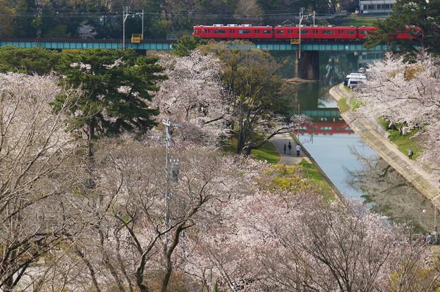 桜を乗せて