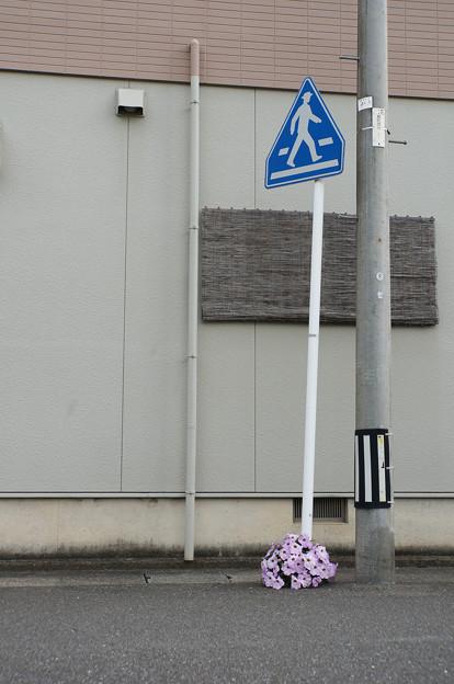 足元の花束