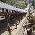 Photos: 吉備津神社廻廊