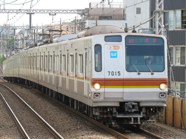 東急東横線 普通渋谷行 IMG_0518