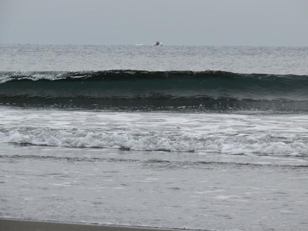 鵠沼海岸 海その1116 IMG_4294