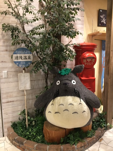 トトロ@道後温泉