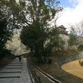 Photos: 松山城1