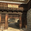 Photos: 松山城2