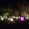 チームラボ広島城光の祭22