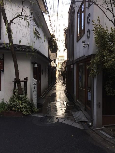 京都柳小路 雪
