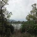 門池公園から門池を眺める
