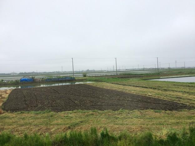 総武本線田園風景1