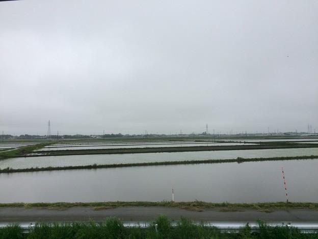 総武本線田園風景2