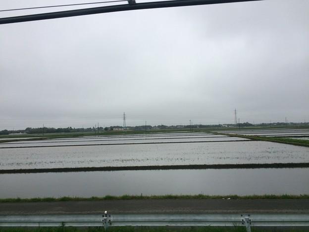 総武本線田園風景3