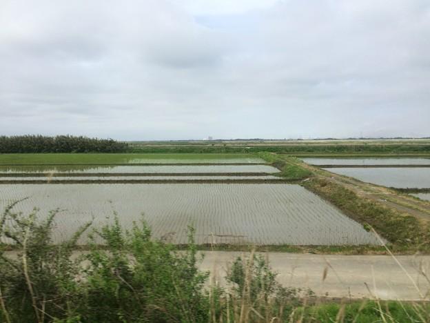 Photos: 成田線からの田園風景3