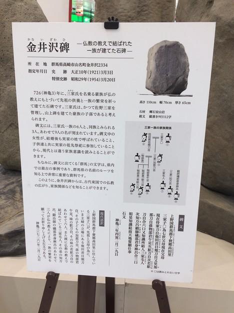 上野三碑6 ~金井沢碑~