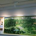 福井県立恐竜博物館2 ~恐竜渓谷ふくい勝山ジオパーク~