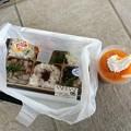 福井県立恐竜博物館5 ~昼食のお弁当~