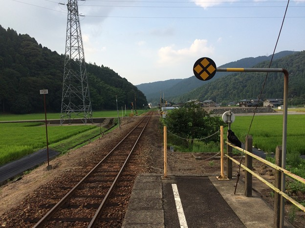 一乗谷駅6