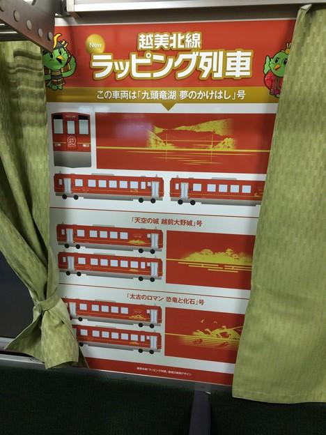 越美北線 ラッピング列車2