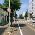 Photos: 武生市街2