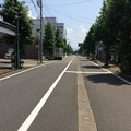 Photos: 武生市街4