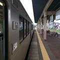 Photos: 新井駅4