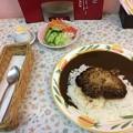 セイロンパラダイス カレー