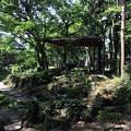 Photos: 隆泉苑1