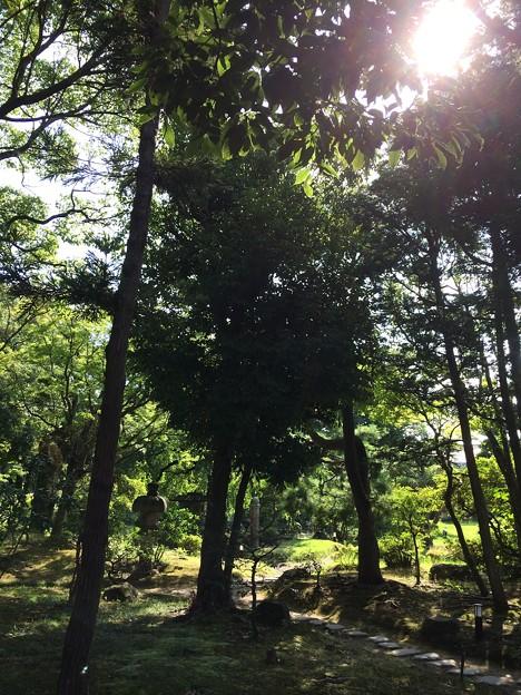 Photos: 隆泉苑3