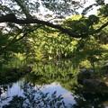 Photos: 隆泉苑6