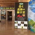 Photos: 田沢湖駅6 ~駅内~