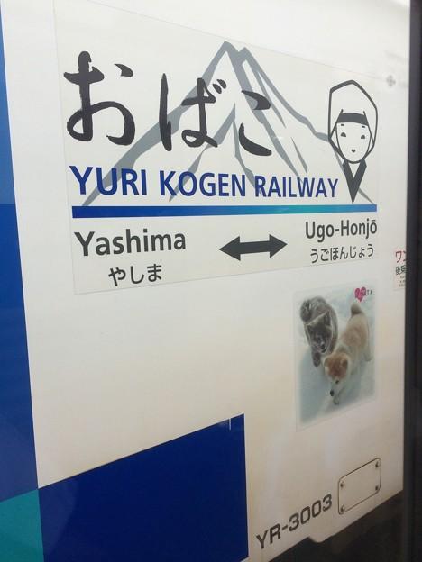 由利高原鉄道14 ~おばこ~