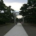 鶴ヶ岡城跡1