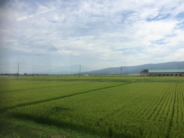 庄内平野 車窓風景6