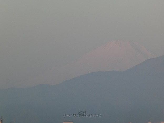 210222-富士山 (1)