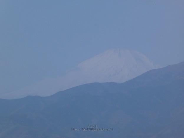 210223-富士山 (3)
