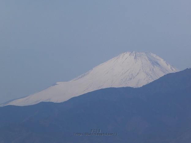 210227-富士山 (1)