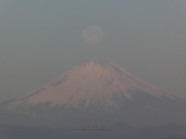 210228-パール富士 (35)