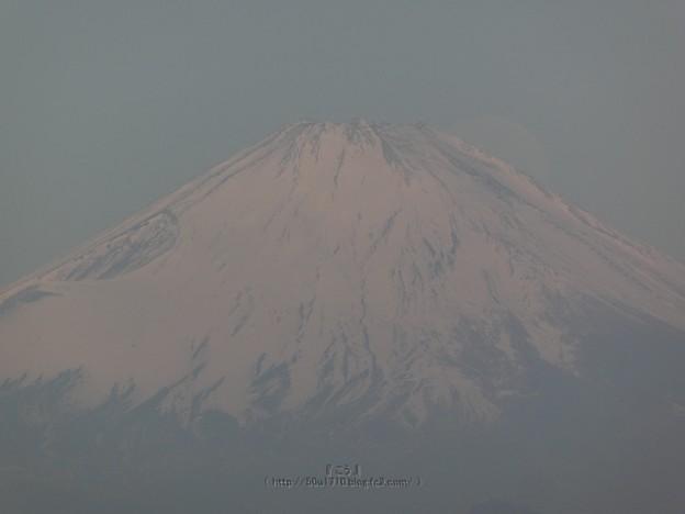 210228-パール富士 (52)