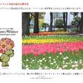 21年春 花と緑のスプリングフェスタ