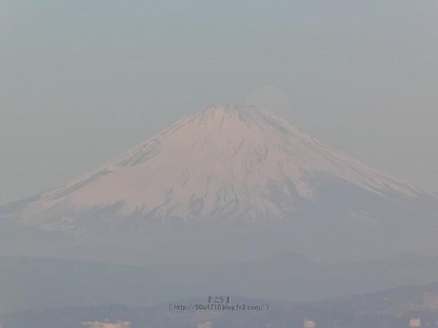 210228-パール富士 (48)