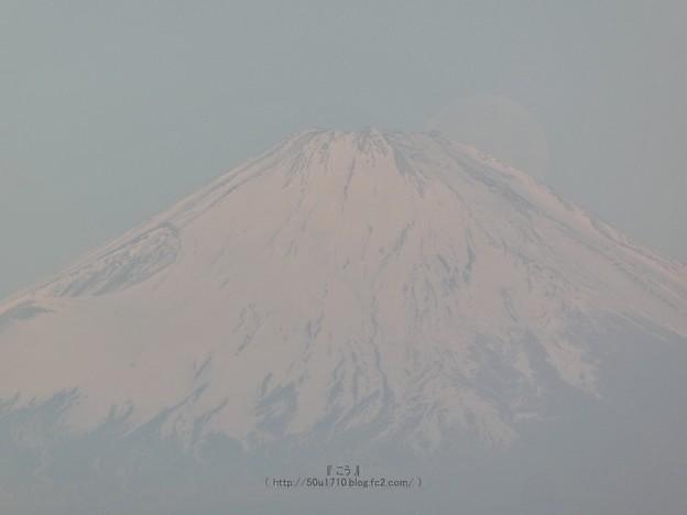 210228-パール富士 (50)