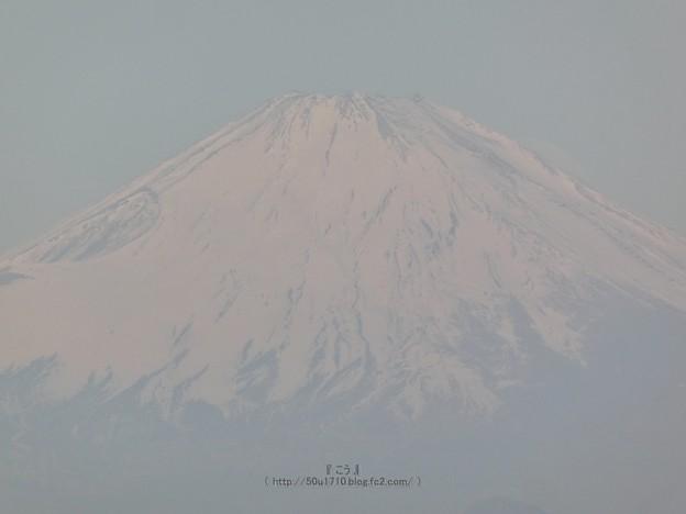 210228-パール富士 (57)