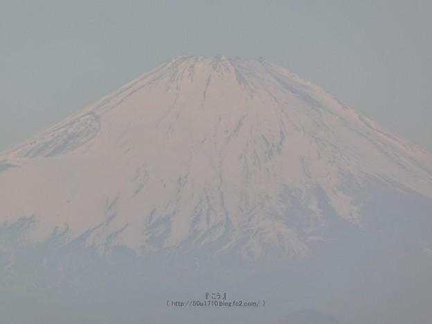 210228-パール富士 (62)