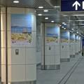 P_20210322_横浜駅みなみ (3)