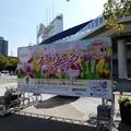 210409-ガーデンベアグリーティング@横浜公園 (1)