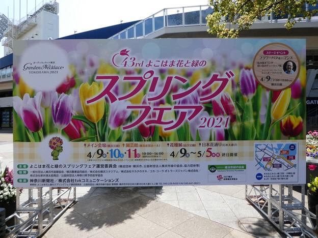 210409-ガーデンベアグリーティング@横浜公園 (2)