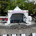 210409-ガーデンベアグリーティング@横浜公園 (4)