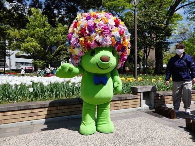 210409-ガーデンベアグリーティング@横浜公園 (80)