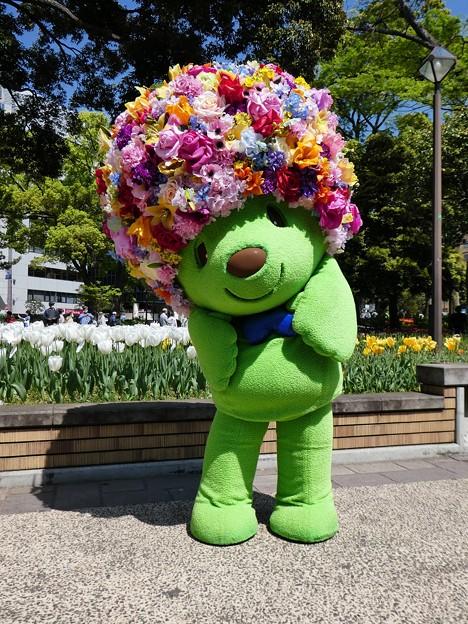 210409-ガーデンベアグリーティング@横浜公園 (104)