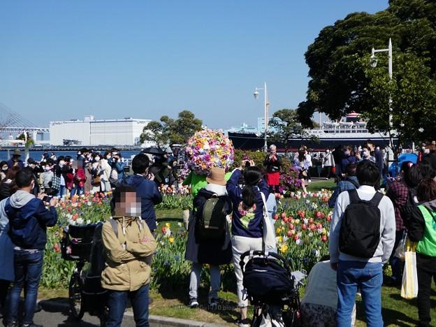 210410-ガーデンベアグリーティング@山下公園 (11)