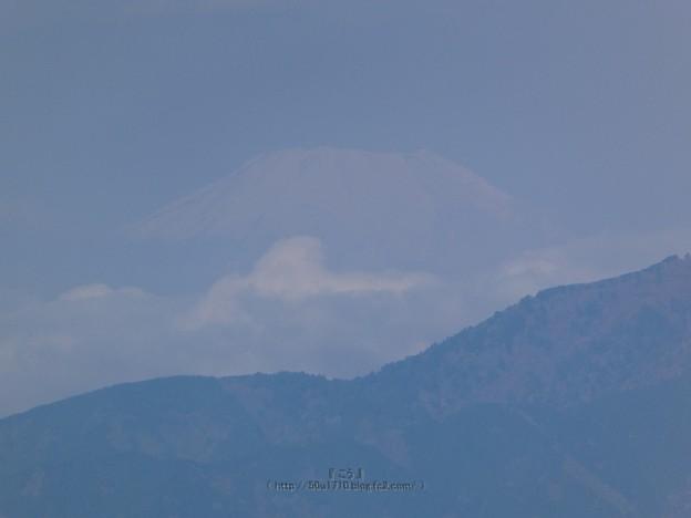 210409-富士山 (2)