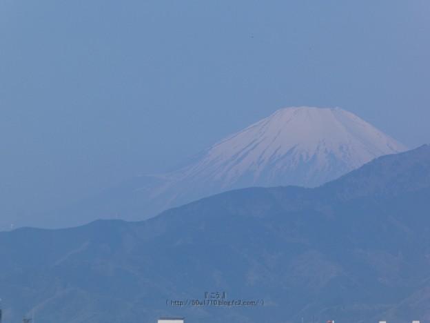 210411-富士山 (1)